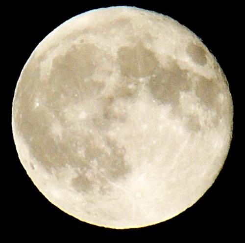 Moon by Katy Pye