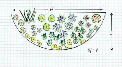 Butterfly garden plan-About.com Gardening