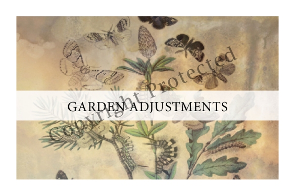 I Spy! Who's Using My Garden? Garden Adjustments sample page
