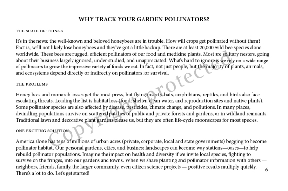 I Spy! Who's Using My Garden? p. 6
